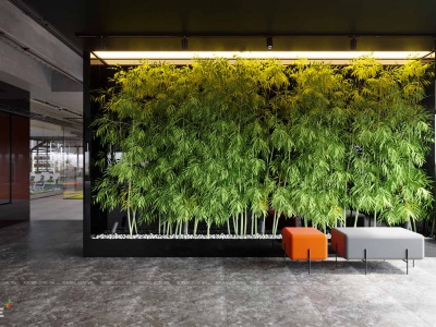Gây dựng văn phòng xanh thân thiện với môi trường làm việc